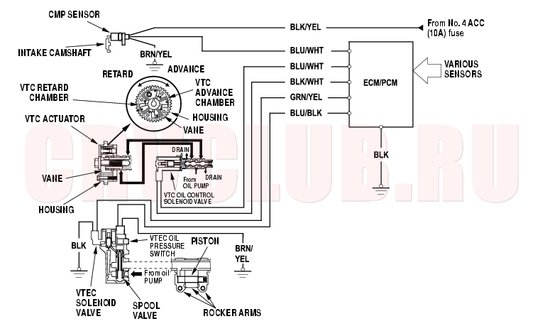 group151 notice Honda 50 Wiring Diagram at gsmx.co