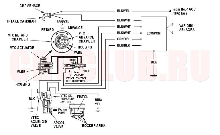 group151 notice Honda 50 Wiring Diagram at edmiracle.co